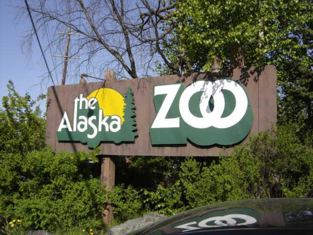 1) Alaska Zoo