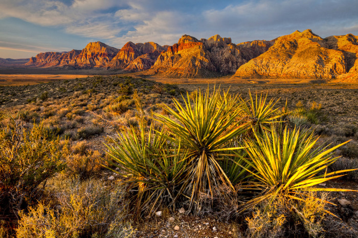 11. Nevada's Red Rock National Conservation Area is very popular among hikers.
