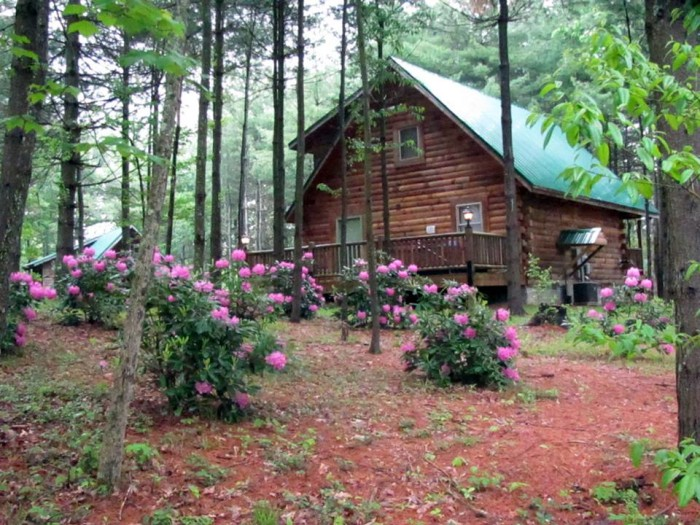 10. Cabins at Pine Haven