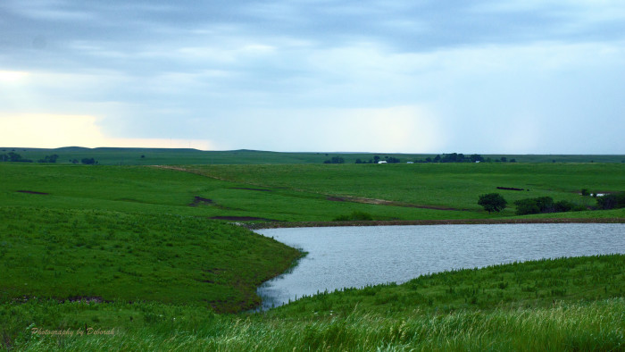16. Finally: Kansas is home to the beautiful and majestic Flint Hills.