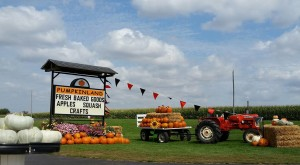 Don't Miss These 10 Great Pumpkin Patches In Iowa This Fall