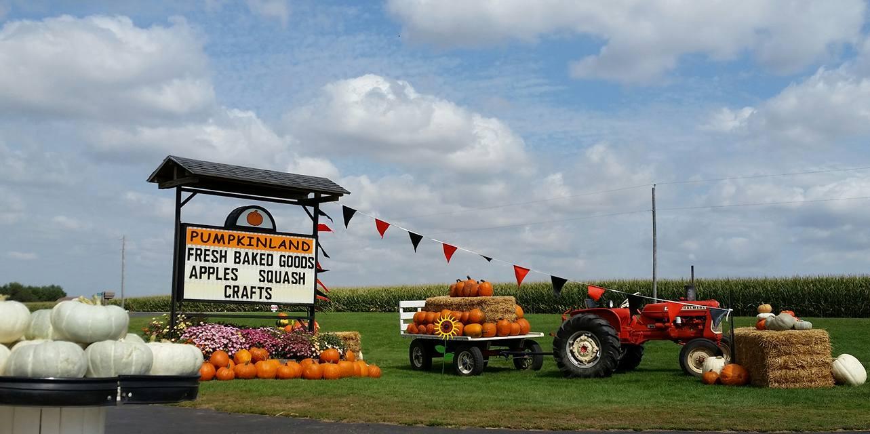 Pooley s pumpkin patch farm in illinois