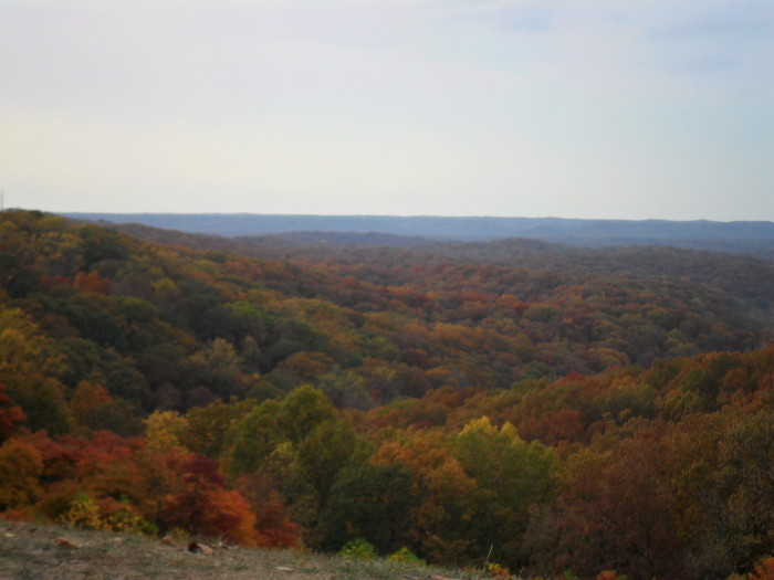 1. Brown County State Park is the best place to view the change of the season in my opinion.
