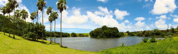 2) Ho'omaluhia Botanical Garden, Oahu