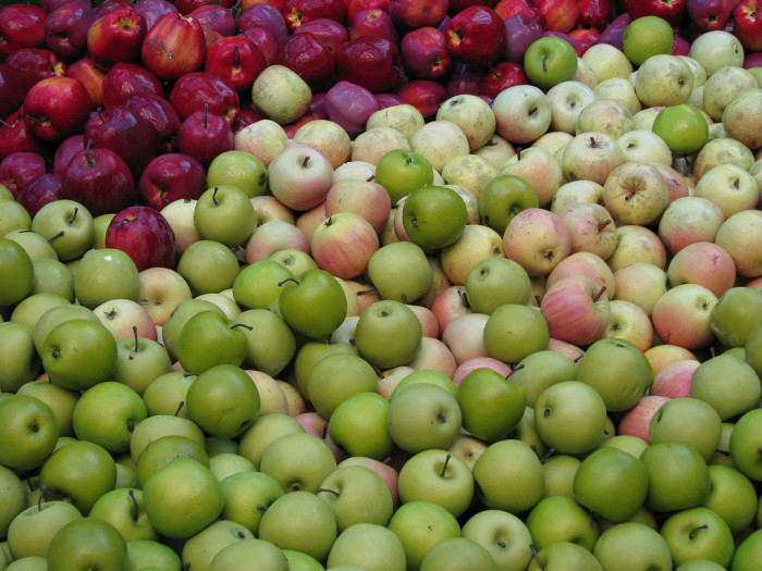 8. Many apple orchards open as fall approaches.
