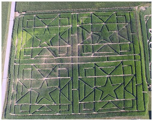 4. Cornucopia Farm