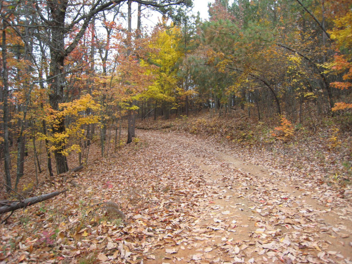 8. A fall day on a barely visible road in Boydville.