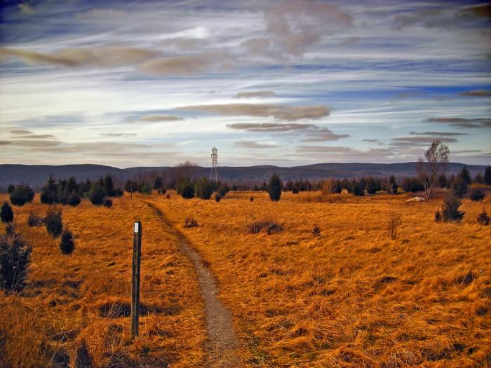 15. The Appalachian Trail