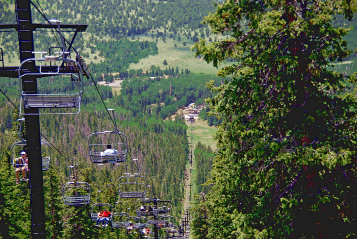 7. On a ski lift over the pines