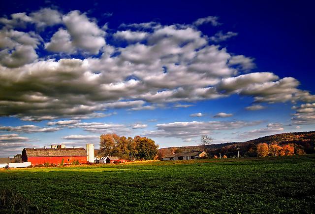 6. Warren County