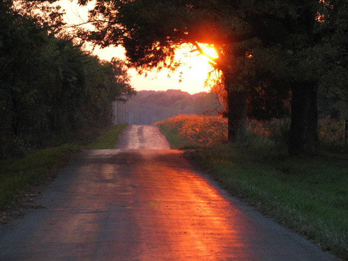 4. I wouldn't mind driving down this road and watching the sun set! If you're curious, this picture was taken in Nineveh.