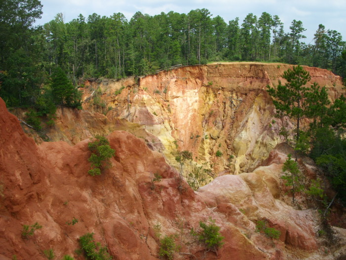 2. Mississippi's very own Grand Canyon, Red Bluff,  makes for a great shot.