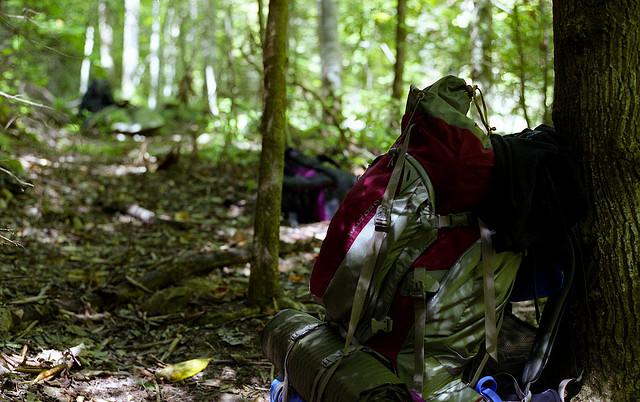 12. Backpack the Appalachian Trail.