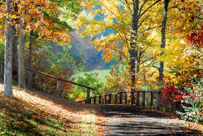 10. Burr Oak State Park (Glouster)