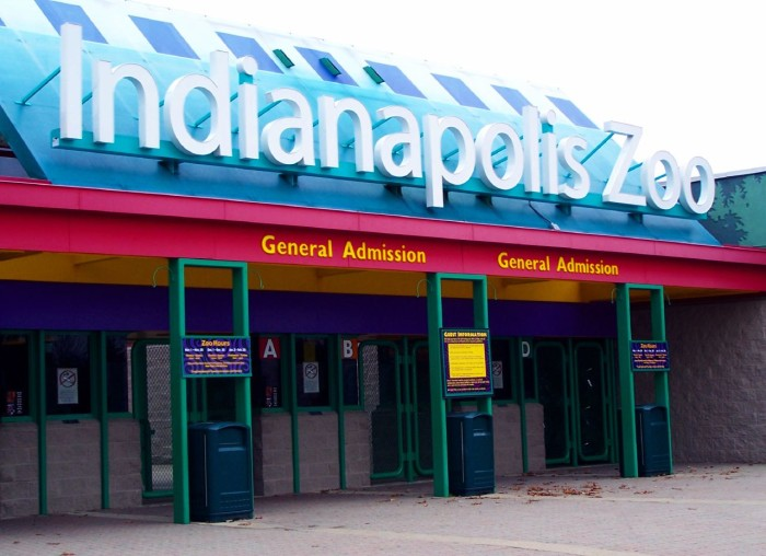 2. Who wouldn't want to go exploring at the Indianapolis Zoo? The animals and exhibits are incredible!