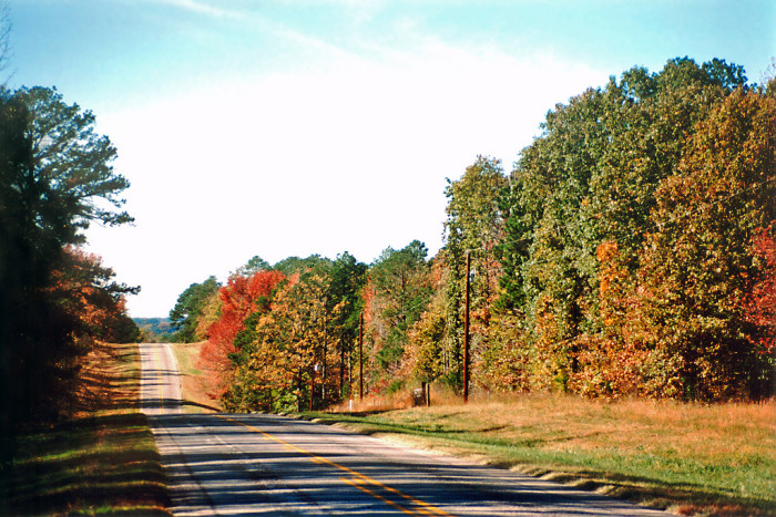 10) We take leisurely weekend drives to admire all of the gorgeous fall foliage!