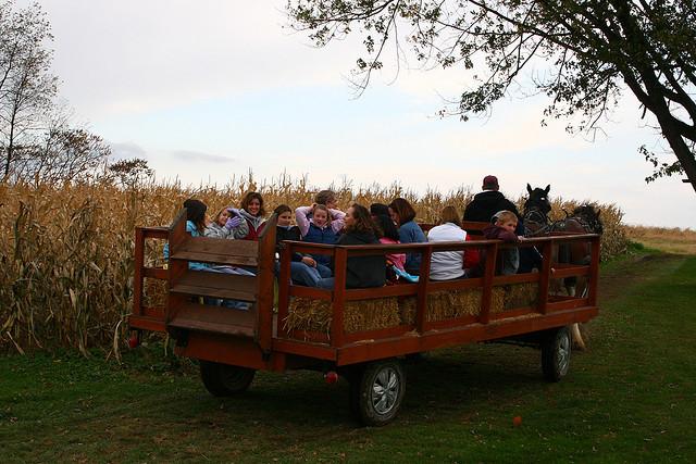 10. Hop on a hayride!