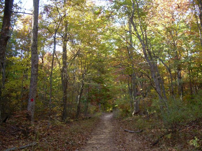 2. Take a scenic hike and enjoy the fall foliage.