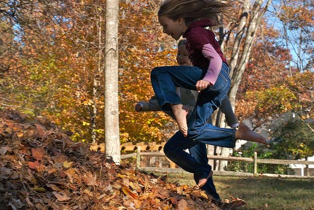 6. But the best part of raking leaves is jumping in huge leaf piles!