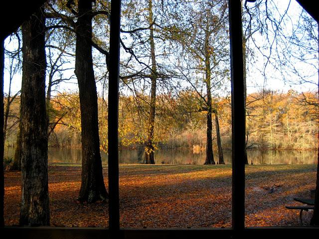 3. The oldest of Mississippi's state parks, Leroy Percy definitely delivers when it comes to great views.