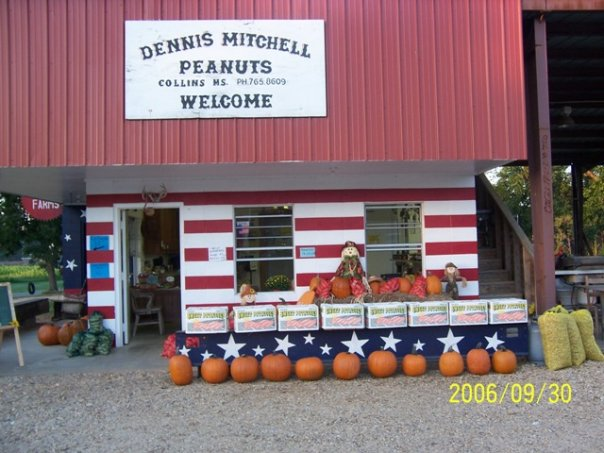 3. Mitchell Farms, Collins