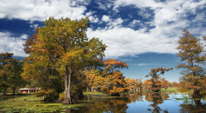 The Fall Foliage At These 10 State And National Parks In Texas Is Stunningly Beautiful