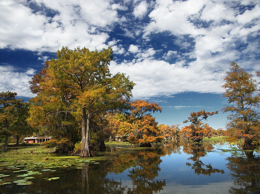 10 state and national parks in texas with beautiful fall