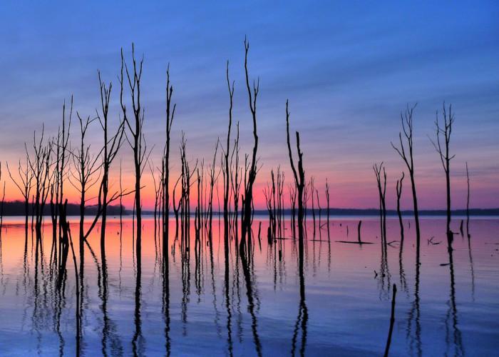 12. Breathtaking scenic views of the Manasquan Reservoir at sunrise.