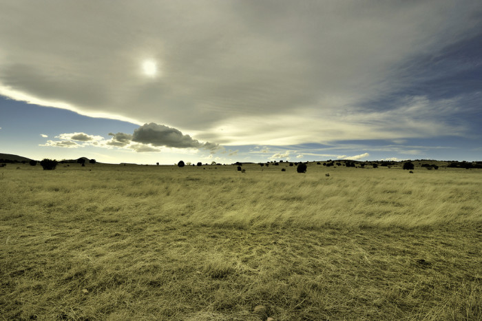 10. If grasslands are more your style, imagine hearing nothing but the wind in this location.