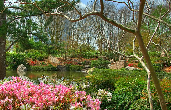 6) Hermann Park Japanese Garden