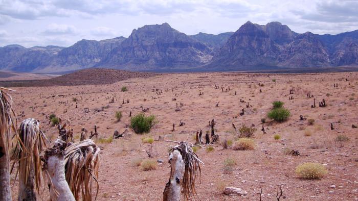 5. Nevada has dry heat.
