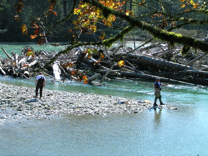 Places to go fishing in washington for Skagit river fishing