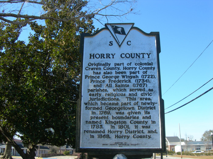 8. Horry County