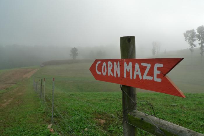 13.  Mile Creek Farm and Produce