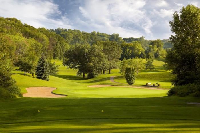 4. Braemar Golf Course, Edina.
