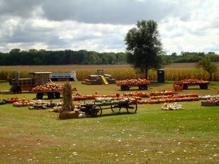 3. Sherman's Pumpkin Farm and Corn Maze