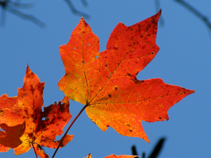 16. It's so much cooler when Fall sets in and...