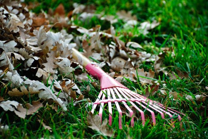 11. A Rake or Leaf Blower.