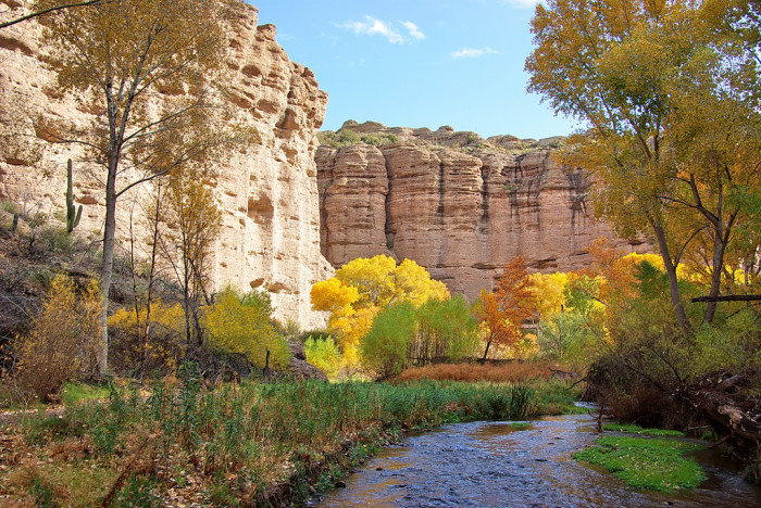 4. Fall means the temperatures are just right for a nature walk or a hike anywhere in the state.