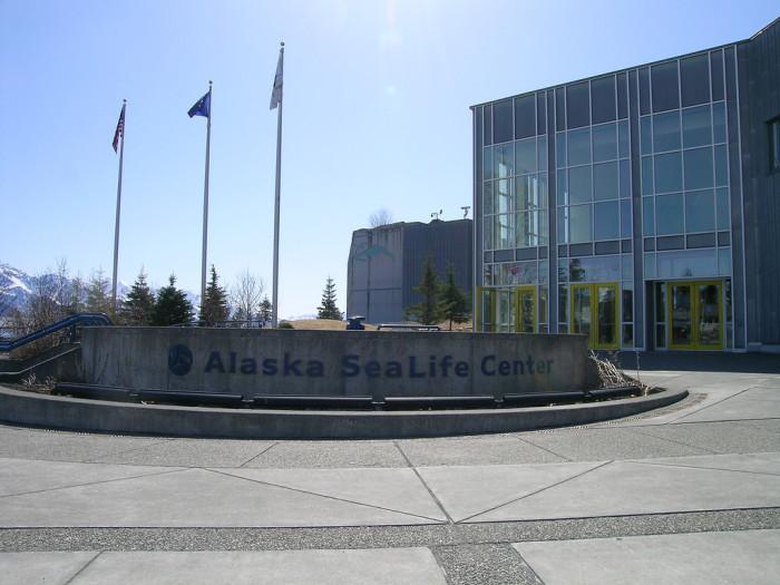 2) Alaska SeaLife Center