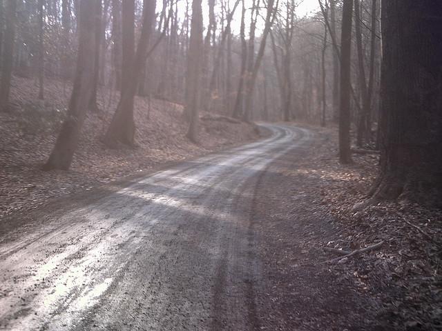 4. Enter the woods via Cuttalossa Road in Solebury.