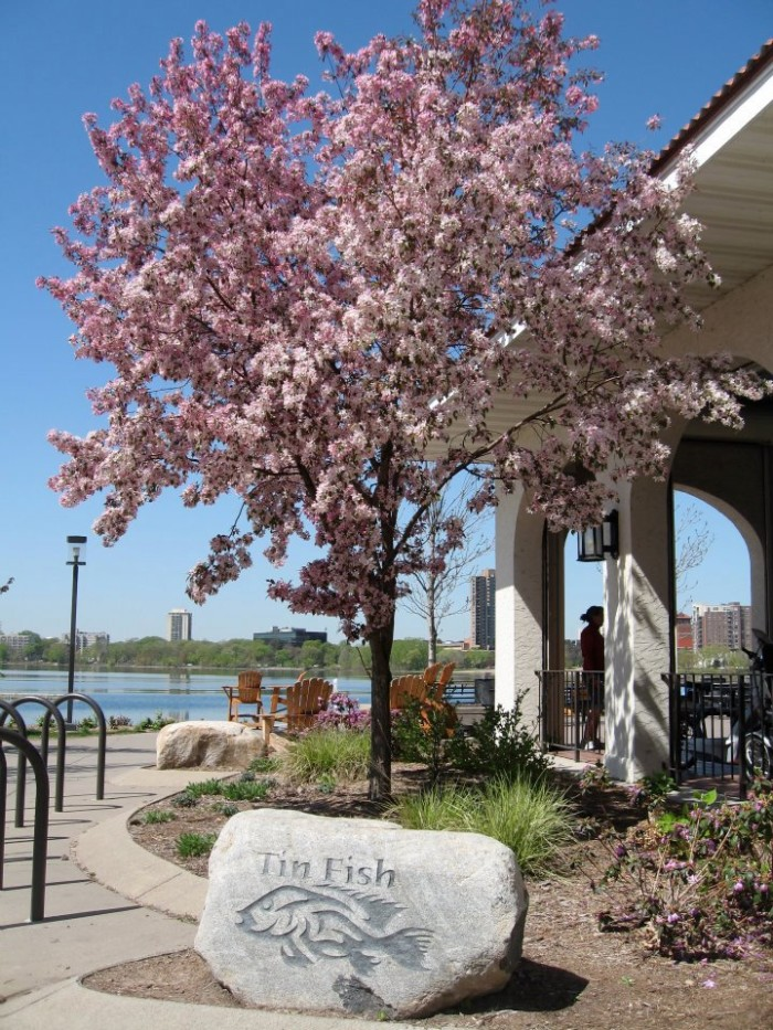 7. On beautiful Lake Calhoun, Tin Fish is easily one of the best waterfront dining establishments in the state!