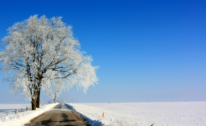 6. Hoosiers are no stranger to snow and sometimes the snow makes for an equally beautiful driving experience. This gorgeous picture was taken somewhere in Rush County.