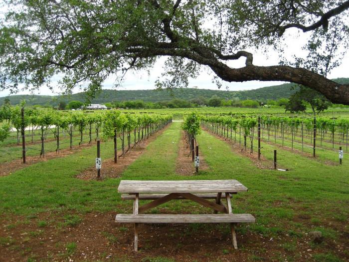 9) Wineries/Vineyards