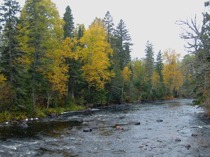 10. Temperance River State Park is a technicolor dream in autumn. Well worth a visit!