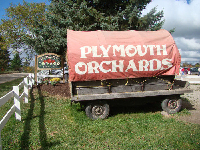 7) Visit one of the state's many cider mills and apple orchards