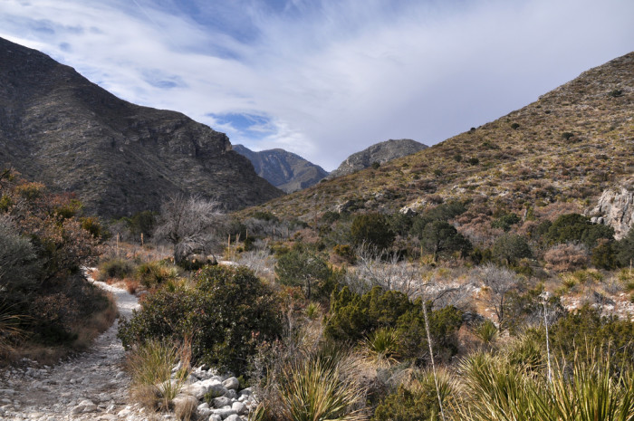 9) McKittrick Canyon Trail (Guudalupe Mountains National Park)