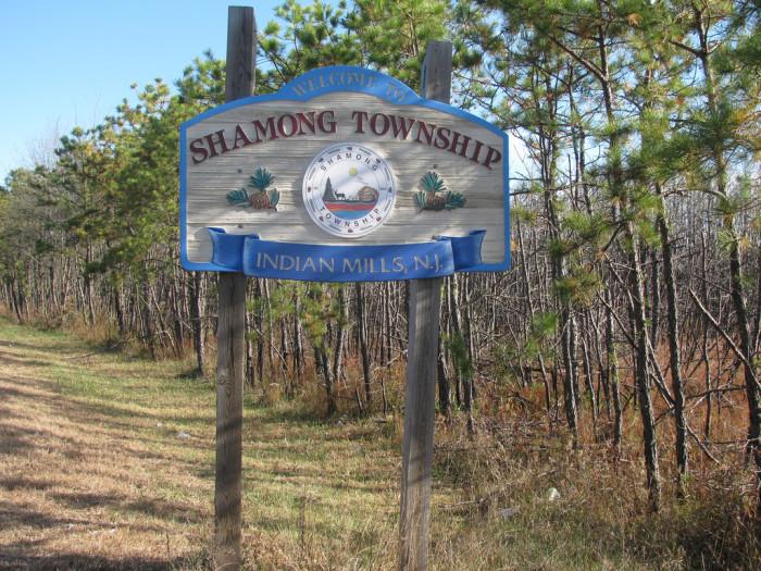 10. Shamong