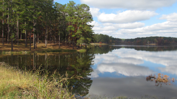 5. Choctaw County