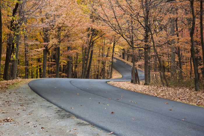 4. This winding road is going to take you on a scenic drive through the Brown County State Park. I don't know about you, but I think this would be a great place to go as the fall season sets in!